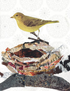 Canary Nest Collage